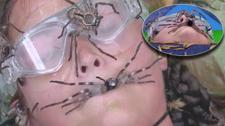 Jacqueline Jossa is covered in spiders