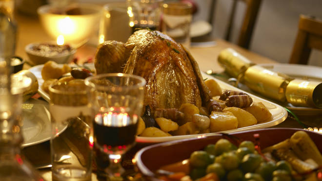 Pets can only eat boneless, skinless, white meat from a turkey