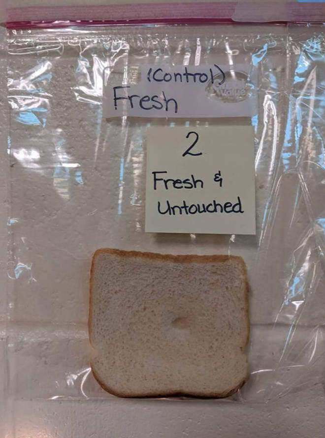 The untouched piece of bread had remained fresh