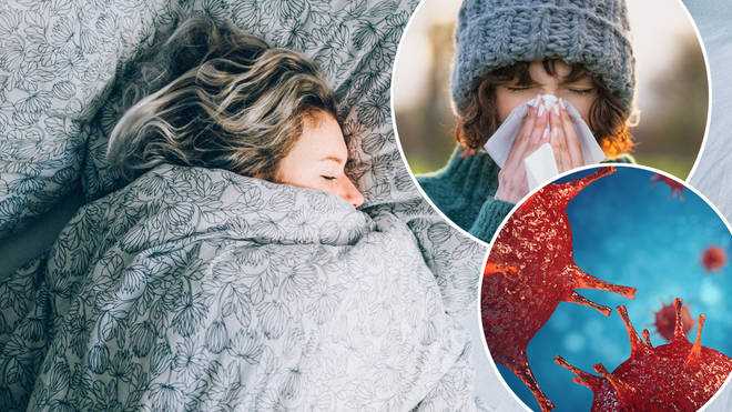 Here's how you can avoid the common cold this season