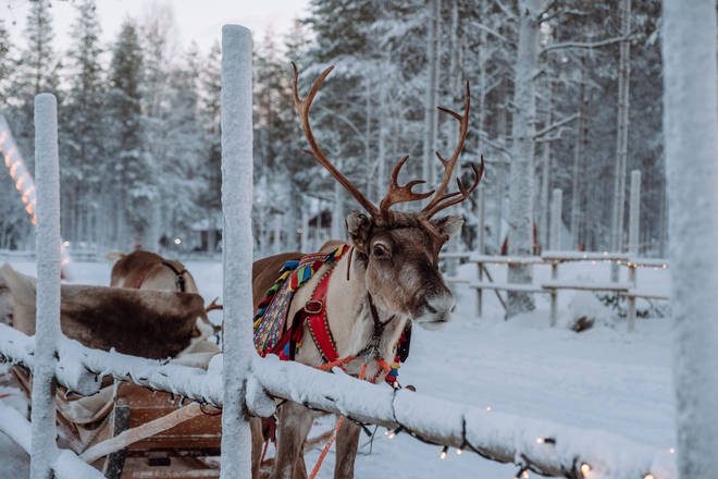 Rudolph can visit your children anywhere this Christmas