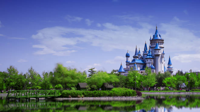 The mum wants to raise the funds to get married in Disneyland (stock image)
