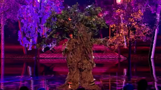 The tree has baffled ITV viewers