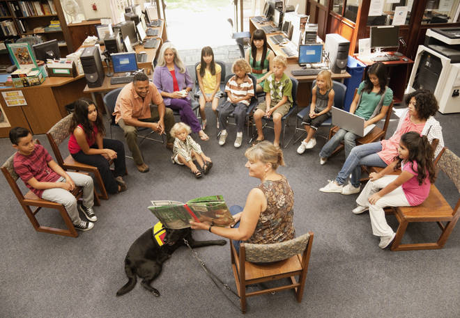 Parents disagree on whether or not schools should have dogs