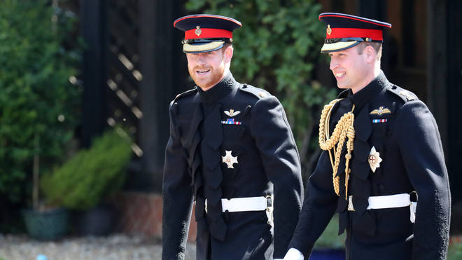 Prince Harry and Prince William put on a united front with a joint statement