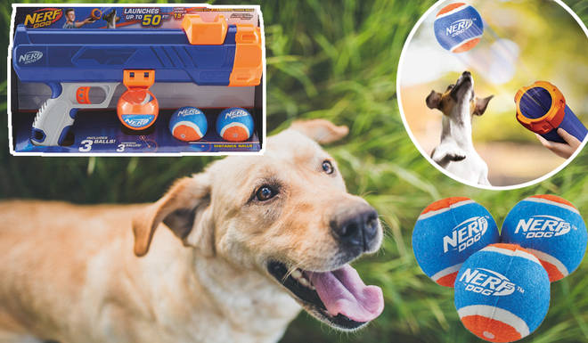 Aldi is selling a Nerf Gun specifically made for playing fetch with your dog