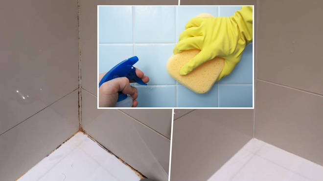 Here's how to get rid of mould in minutes