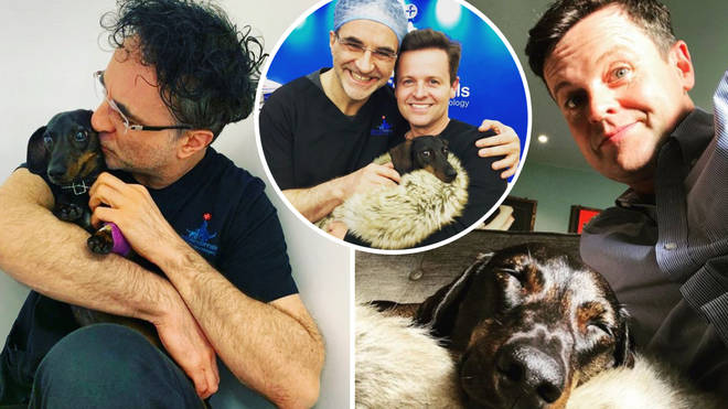 Dec has thanked The Supervet for treating his beloved sausage dog, Rocky.