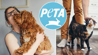 PETA has called for people to stop calling animals 'pets'