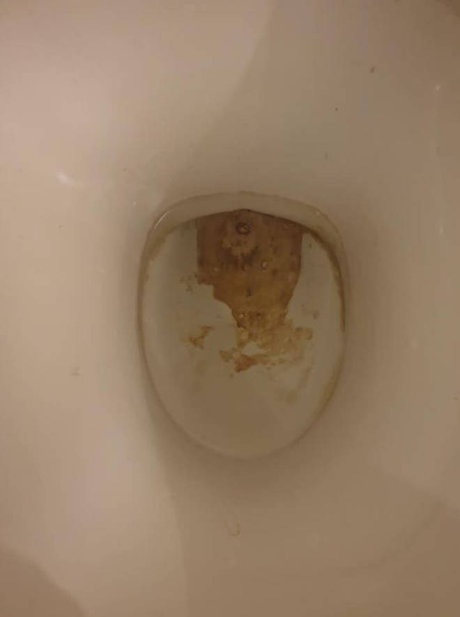 She shared an image of her dirty toilet bowl which was caked in limescale