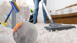 Get rid of the hair on your carpet using this squeegee hack