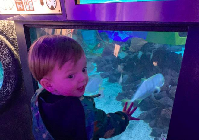 Rocco loved the Deep Sea Adventure