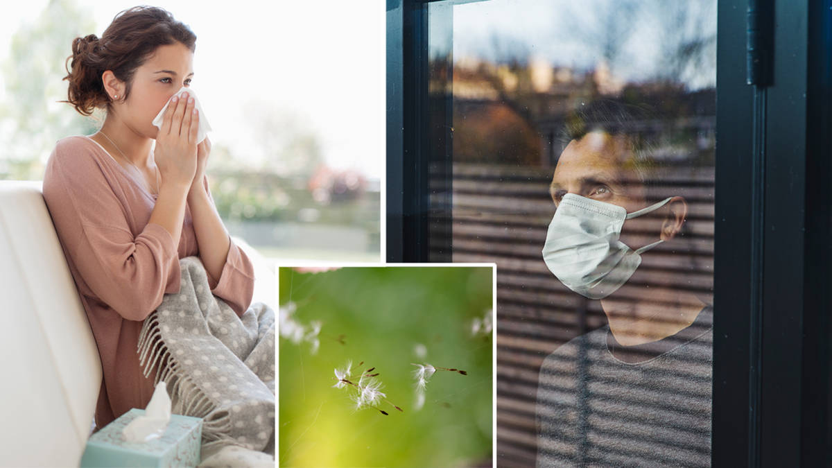 How to tell the difference between hay fever and coronavirus with 'two cardinal symptoms'