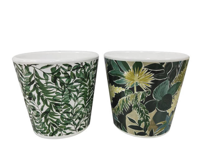 Patterned or coloured planters can really brighten up a drab outside space