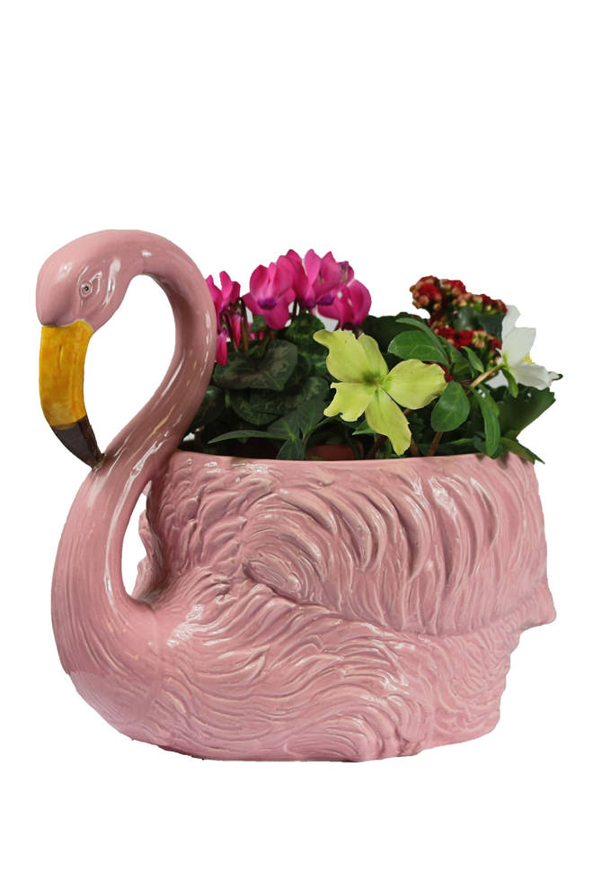 This kitsch planter will bring a smile to your face