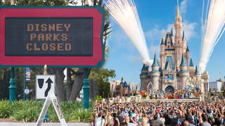 Disneyland and Disney World parks may not fully open until next year
