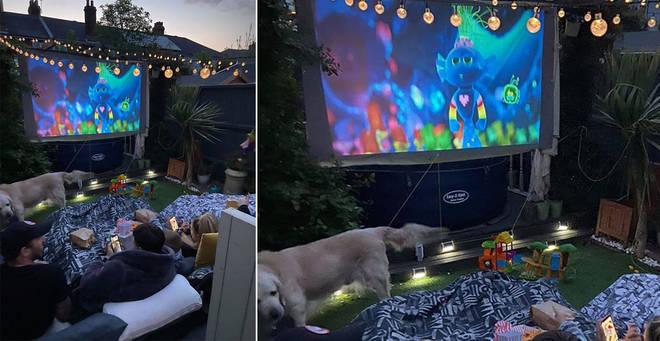 A mum has revealed how she transformed her garden into a cinema