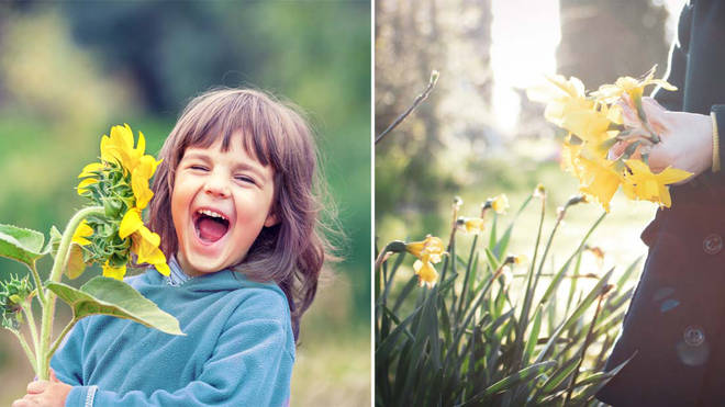 Parents could face a hefty fine if their kids pick flowers from certain places (stock images)