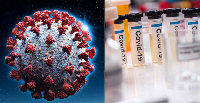 The antibody test is said to be 100 per cent accurate (stock images)