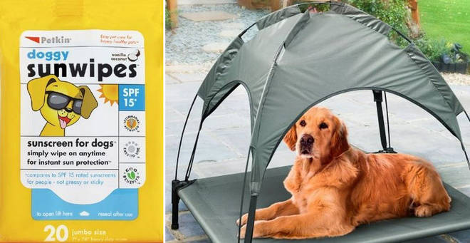 B&M have a new range perfect for keeping your pooch happy in the sun
