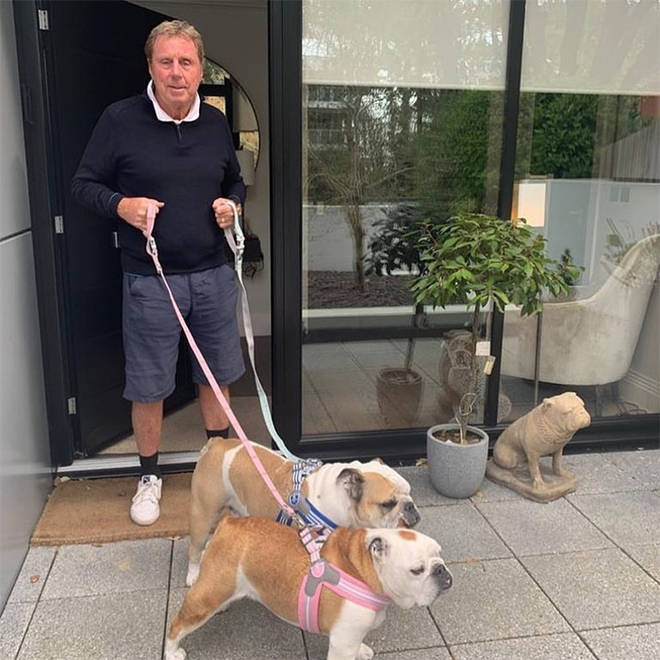 Harry Redknapp taking his dogs out for a walk