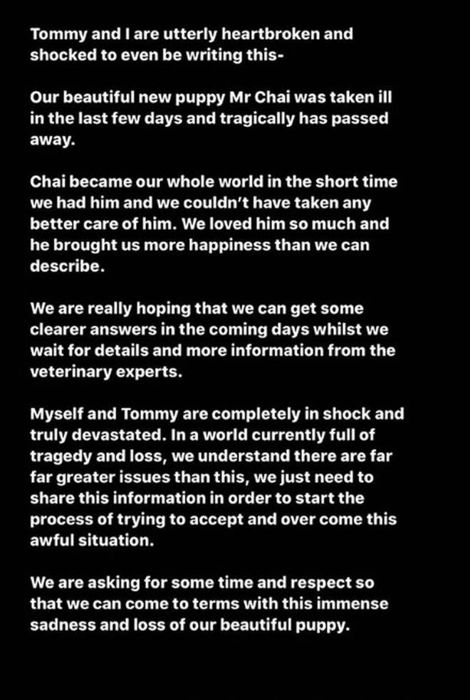 Molly-Mae and Tommy Fury released a statement about the death of their dog