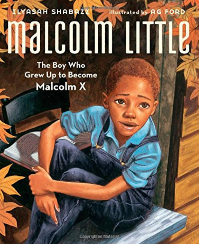 Malcolm Little: The Boy Who Grew Up to Become Malcom X, by Ilyasah Shabazz, illustrated by Ag Ford