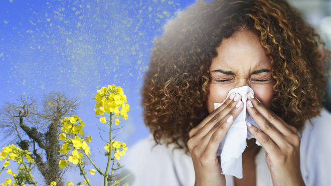 Hay fever: What are the symptoms and how can you treat it?
