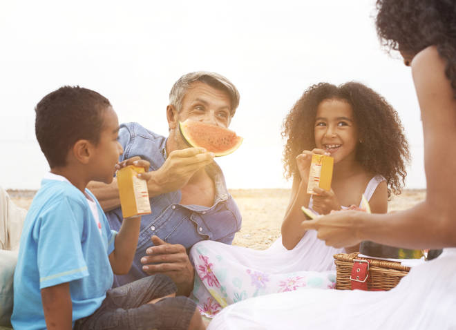 Picnics with your household are allowed under lockdown guidance in England (stock image)
