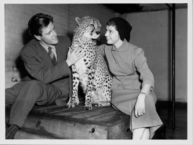 Gerald Durrell and his wife Lee McGeorge at London Zoo