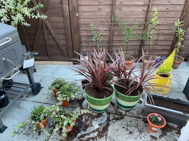 Fia chose different plants and brightly coloured pots to make her garden more inviting