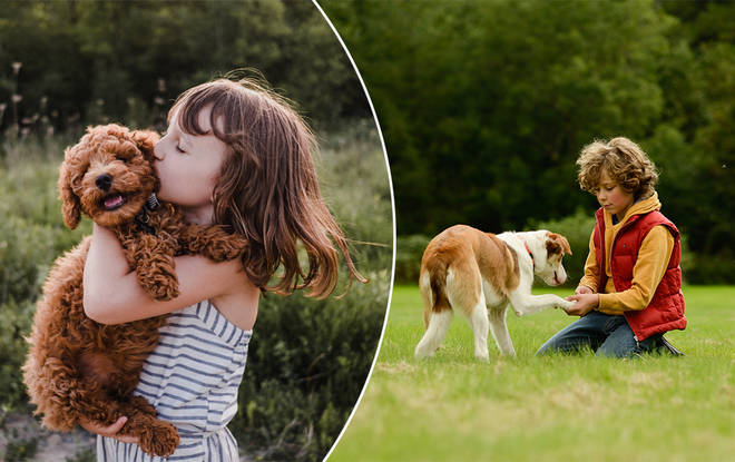 Your kid begging for a pup might not be such a bad thing after all!