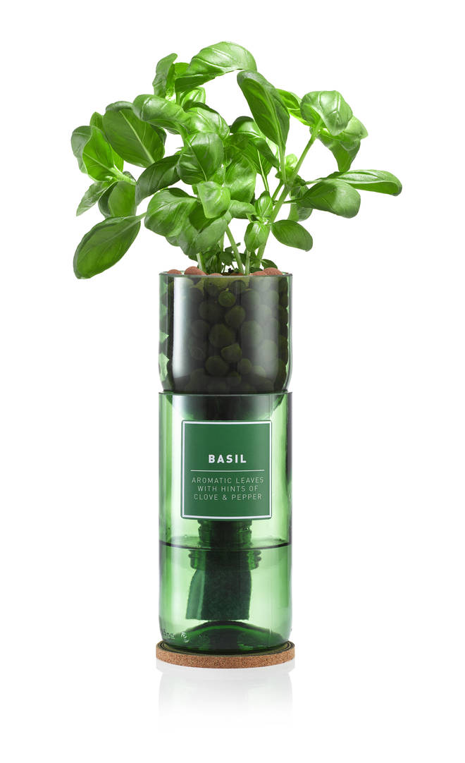 Hydro herb