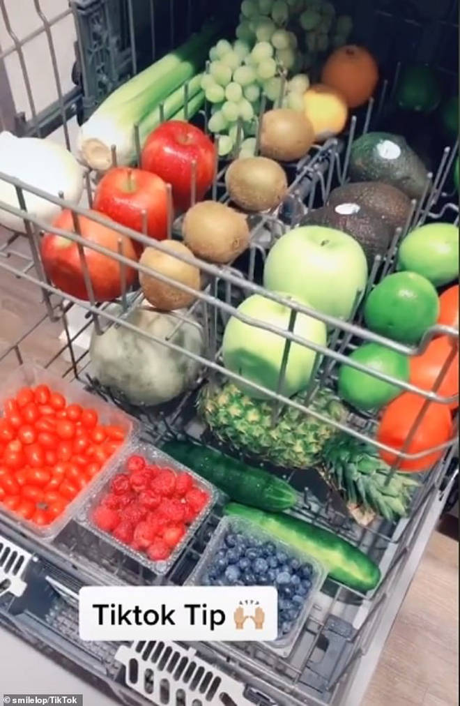 The user lined up all of her veg in the dishwasher