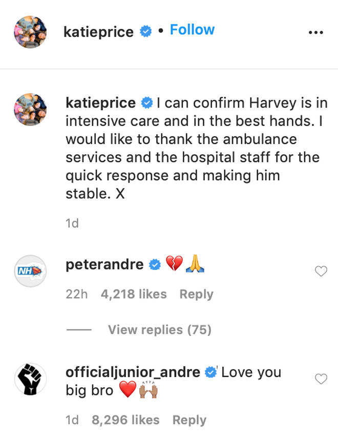 Peter Andre commented a praying emoji on Katie Price's post about Harvey