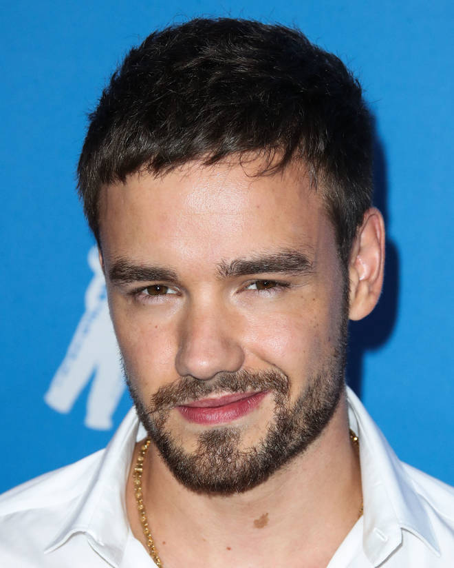 Liam has pursued a number of solo projects since One Direction's hiatus