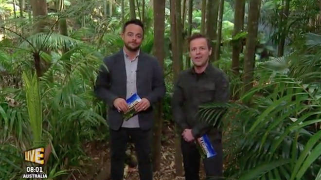 Ant and Dec will be back in the I'm A Celebrity jungle later this year