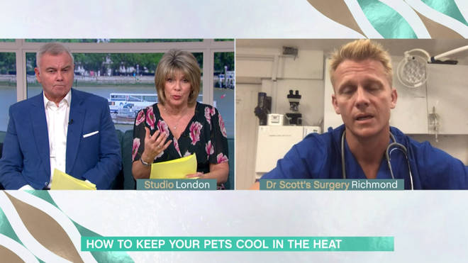 Scott Miller has given some advice to dog owners