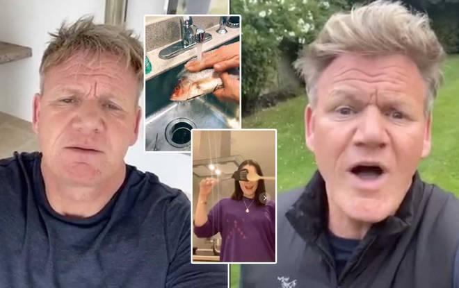 Gordon's videos are hilarious