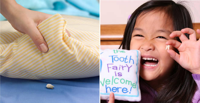 How much does your tooth fairy gift? (stock images)