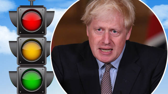What is the Government's traffic light system?