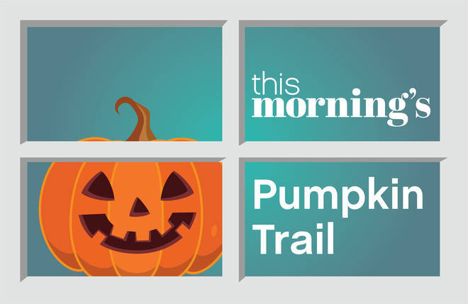 This Morning have pumpkin templates you can download and print off for your window