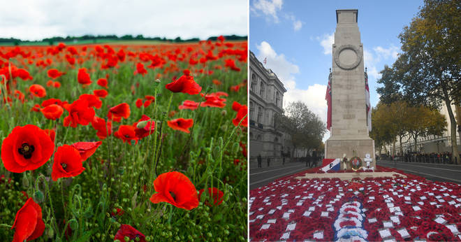 Ways to honour Remembrance Sunday at home