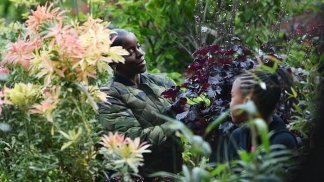 Garden centres will remain open during lockdown