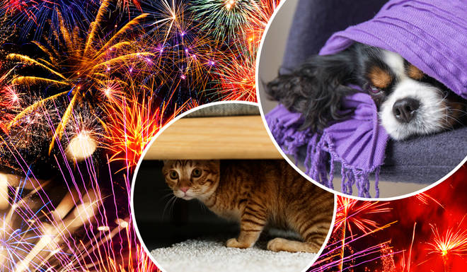 Is it time to say goodbye to fireworks?