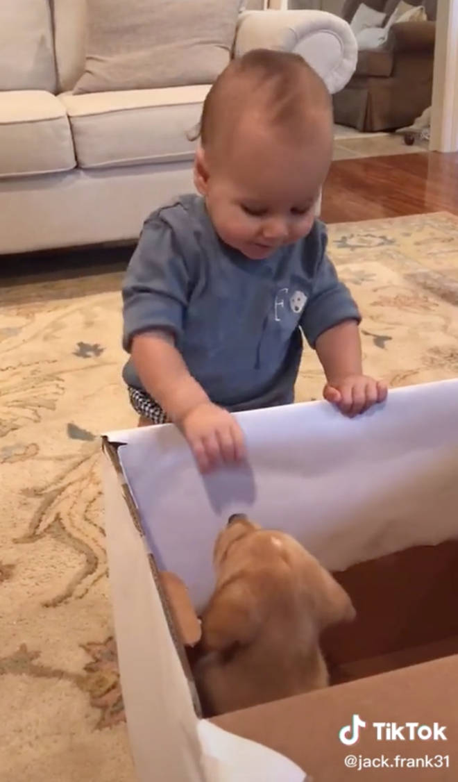 The little baby was so excited about his present