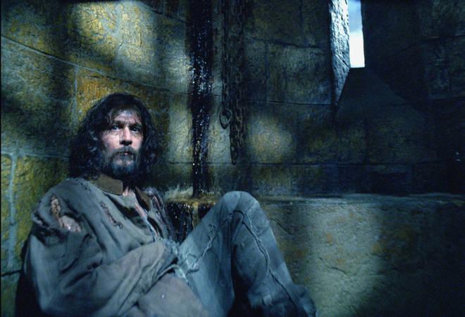 Gary Oldman played Sirius Black in the franchise