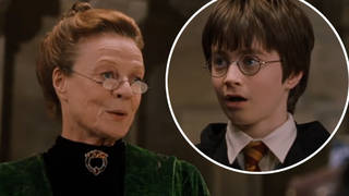 Looks like Professor McGonagall is the real star of the series