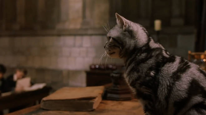 We're sure her being an animagus has only made her more popular