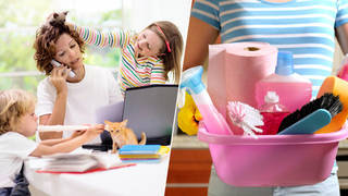 A job advert for a nanny has been slammed online